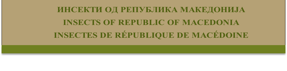 ИНСЕКТИ ОД РЕПУБЛИКА МАКЕДОНИЈА 